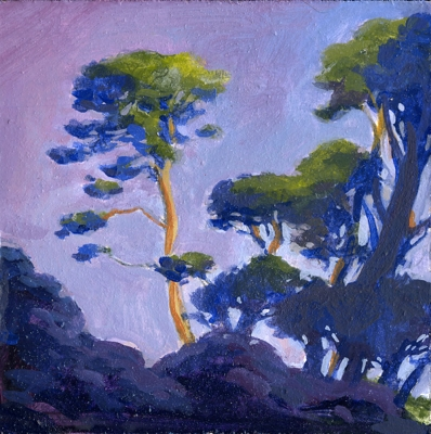 Cambria Pines Color Study #2, 4